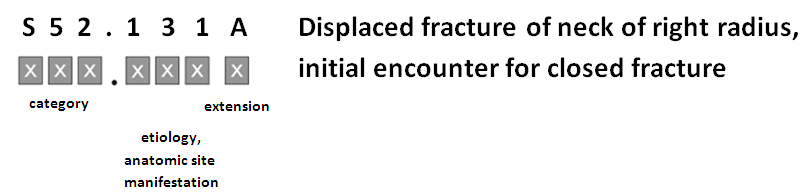 ICD-10 Code Example: Displaced fracture of neck