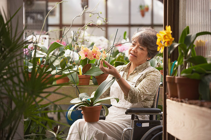 Senior woman sitting in a wheelchair in a greenhouse